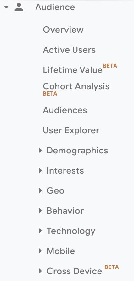 Audience - Google Analytics