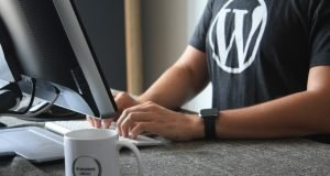 How to Optimise Guy in Wordpress shirt at computer - Youtube Video Embeds in Wordpress