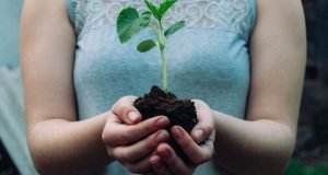 Lady holding plant sprouting from earth - How to write a Viral Blog Post - Compounding