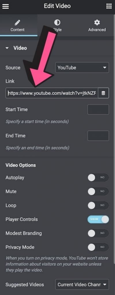 Elementor Video Widget